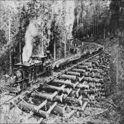 Какие поезда